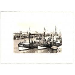 Flandre occidentale Zeebruges - Port de Pêche.