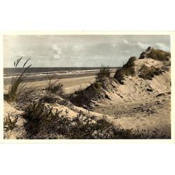 ABAO Flandre occidentale Zeebruges - La dune, ourlet de la mer.