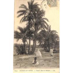 ABAO Algérie Scènes et types - Tombes dans les palmiers.