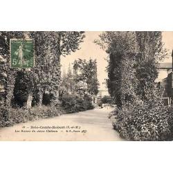 ABAO 77 - Seine-et-Marne [77] Brie-Comte-Robert - Les Ruines du vieux Château.