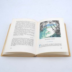 ABAO Livres illustrés Alain-Fournier - Le Grand Meaulnes. Illustrations de Nelly Degouy.