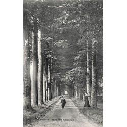 Brabant flamand Tervueren - Allée vers Ravenstein.
