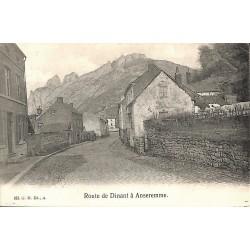 ABAO Namur Anseremme - Route de Dinant.