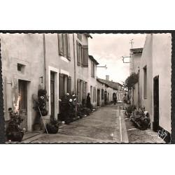 ABAO 17 - Charente-Maritime [17] Île de Ré - Chte Mme. Les Portes. Venelle aux fleurs.